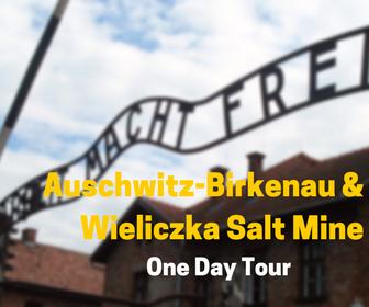 Auschwitz&Wieliczka
